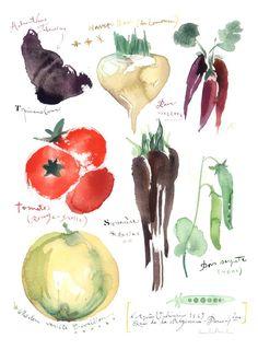 Antique vegetables par lucileskitchen