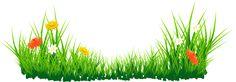 Цветы с травой PNG изображение