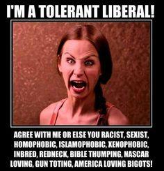 Risultati immagini per liberal politically correct leftist