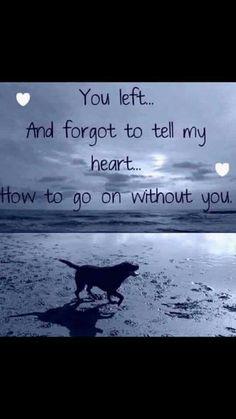 20 Best Inspirational Dog Death Quotes Pinterest Images