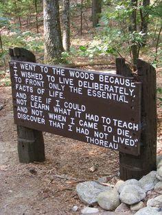 Thoreau-Walden-quote.jpg 2,304×3,072 pixels