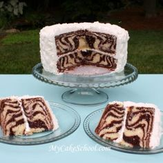 zebra cake! cool for a safari party theme and would also be cool to do different colors. hot pink?