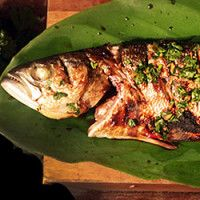Peixe na brasa com molho tailandês