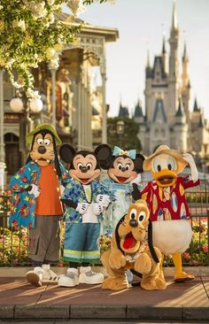 Walt Disney World Resort Board: All About Disney Disney World Fotos, Viaje A Disney World, Disney World Pictures, Disney Parks, Walt Disney World Vacations, Disney Couples, Disney World Characters, Disney Movies, Fictional Characters