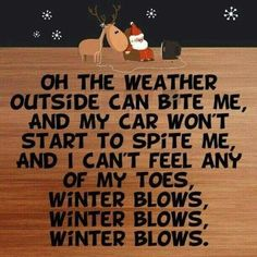 32 Funny Quotes about Christmas for the Grinch or Buddy Elf in All of Us - 32 lustige Zitate über We Christmas Jokes, Christmas Quotes Funny Humor, Funny Winter Quotes, Merry Christmas, Quotes About Winter, Christmas Greetings, The Grinch Quotes, Winter Sayings, Christmas Ideas