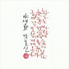 박효신, 야생화