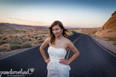 Las Vegas Luv Bug Valley of Fire Wedding