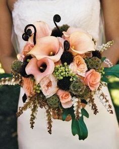 Fiddlehead ferns add a touch of whimsy. Type of flowers: Peach calla lilies pink roses fiddlehead ferns scabiosa pods. Fiddlehead ferns add a touch of whimsy. Type of flowers: Peach calla lilies pink roses fiddlehead ferns scabiosa pods. Peach Bouquet, Bridal Bouquet Pink, Bride Bouquets, Bridal Flowers, Floral Bouquets, Calla Lillies, Calla Lily, Colorful Roses, Types Of Flowers