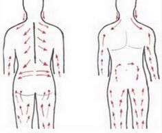 The lymphatic system is part of our circulatory system and a major component of our immune system. It is a network of organs, nodes, ducts and vessels which carry lymph (a clear fluid) from tissues to the blood stream. Circulatory System, Lymphatic System, Dry Brushing Skin, Dry Skin, Ayurveda, Reduce Inflammation, Natural Medicine, Health And Beauty, Blood Vessels