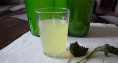 Homemade Nettle Syrup (Recipe) This syrup is very healthy and it will taste delicious. Natural Treatments, Natural Remedies, Health And Wellness, Health Fitness, Acne Help, Arthritis Remedies, Natural Life, Healthy Drinks, Kuroko