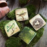 i would happily sit my cup on these lovely coasters