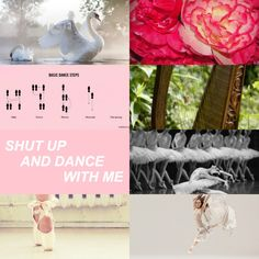 The 9 Muses Aesthetics| Terpsichore (Dance)