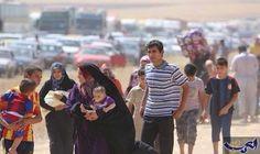 ارتفاع عدد النازحين من مدينة الموصل بسبب…: شنّت القوة الجوية العراقية، الأحد، غارة جوية على قضاء تلعفر غرب مدينة الموصل، فيما أعلنت قيادة…