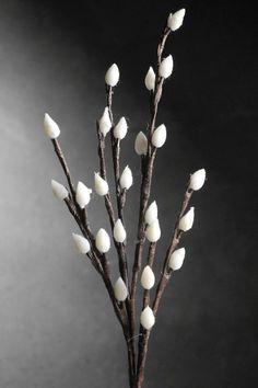 LED Pussy Willow 20 in. Branches 24 Clear Lights Battery Operated - 3 for $24