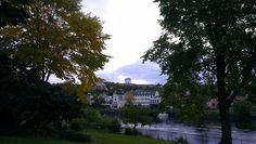 Autumn is here. Trondheim, Autumn, Nature, Fall Season, Fall, Naturaleza, Nature Illustration, Scenery, Natural