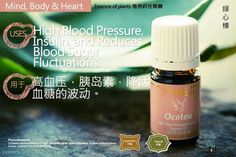 Young Living Ocotea 奥寇梯木https://www.youngliving.com/signup/?isoCountryCode=US&sponsorid=1704613&enrollerid=1704613
