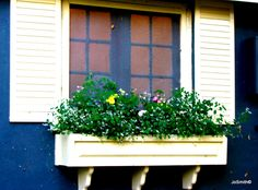 Window Box From Days of Yore - Old Oakville Kitchens, Outdoor Structures, Windows, Box, Kitchen, Home Kitchens, Boxes, Window, Cucina