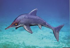 Ichthyosaurus; Late Triassic - Early Jurassic (Rhaetian - Pliensbachian epoch); Discovered by De la Beche & Conybeare, 1821