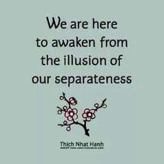 We are here to awake from the illusion of our separateness.