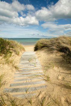 'Path to the Beach - Dolphin Sands, Australia&. - 'Path to the Beach - Dolphin Sands, Australia&. Playa Beach, Ocean Beach, Summer Beach, Summer Time, Parasols, I Love The Beach, All Nature, Beach Scenes, Belle Photo