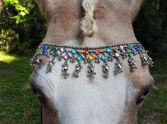 Jeweled Browband for Horses  Equine Tack Jewelry  by MyBuddyBling