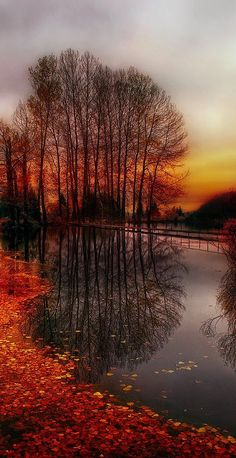 The beauty of fall...