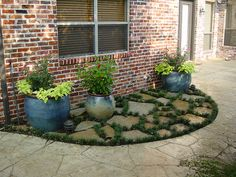 Get inspired with our Container Gardening Ideas for small containers, urns and many more. Create features in your outdoor spaces. Patio Edging, Flagstone Patio, Backyard Patio, Colored Concrete Patio, Texas Landscaping, Luxury Landscaping, Landscaping Ideas, Ground Cover Plants, Landscape Edging
