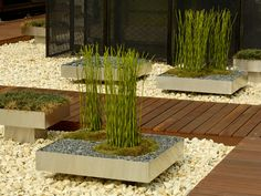 Step by Step Low-lying raised beds and a wooden walkway work well against the backdrop of ladderlike verticals.