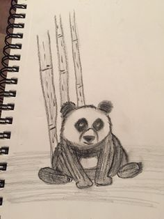 Sad lookin' panda.. Tried to follow along with a tutorial