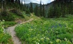 telluride hiking trail photos | telluride hiking trails colorado hikes alltrips Jed Wiebe Trail ...