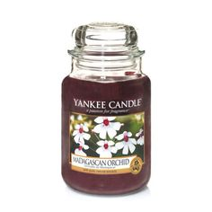 Madagascan Orchid : Large Jar Candles : Yankee Candle