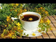 St John's Wort Health Benefits - World Of Herbal Health