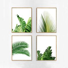 Set of 4 Tropical Leaves, Leaf Prints set, Green Wall art, Minimalist Posters, Palm Leaf Banana Leaf Tropical Wall art Nordic Nature Prints