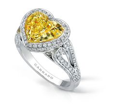 The Regal Ring - I'd rather have a blue or purple stone in the middle... but I love the design!  :)