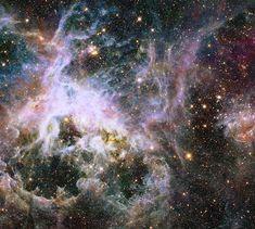 2014年も、宇宙は人類を魅了した【画像集】〜大マゼラン雲の中にある「タランチュラ星雲」ことNGC 2070