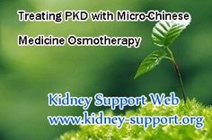 How to treat PKD with Micro-Chinese Medicine Osmotherapy ? PKD is a kind of inherited disease, no one can change the gene, but we can shrink the cysts and protect the kidney function, to help the patient live a normal life without worrying about going into kidney failure stage. It is said that Micro-Chinese Medicine Osmotherapy is an effective treatment of PKD, then how can it treat PKD ?