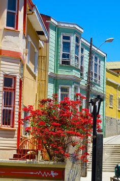 Valparaiso, típicas casas del cerro de Valparaiso, Chile
