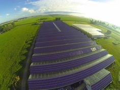 Vine Fresh- Largest FiT Rooftop Solar Array in Ontario