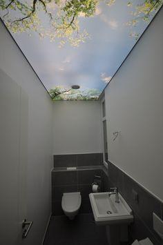 bedruckte Spanndecke in einem Gäste WC #beleuchtung#wc#spanndecke#bad #toilette#renovieren#sanieren