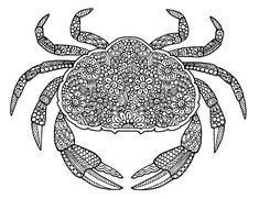 Crab Doodle - Doodle is Art