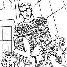 Spiderman scales walls coloring page. With a little imagination color this Spiderman scales walls coloring page with the most crazy colors of your . Spiderman Coloring, Crazy Colour, Coloring Pages, Superhero, Art, Quote Coloring Pages, Art Background, Kunst, Kids Coloring