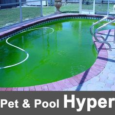 Pet & Pool Hyper Witbank Flooded pool tips: After a rainstorm, swimming pool water may become green and dirty from algae and debris. It is best to clean up immediately after a storm so algae do not multiply and make the water greener, especially during warmer weather. #swimmingpool #poolcare