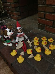 Elf feeds the ducks. Christmas Activities, Christmas Traditions, Elf Christmas Decorations, Awesome Elf On The Shelf Ideas, Elf Magic, Elf On The Self, Naughty Elf, Buddy The Elf, Christmas Elf