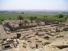 Medinat al-Zahara. Córdoba (siglo X). Restos de la mezquita aljama, que fue una de las primeras edificaciones (941-945). A diferencia de la mezquita de Córdoba, está bien orientada hacia La Meca. Consta de un patio porticado en tres de sus lados y una sala de oración de cinco naves perpendiculares a la qibla. Sólo el espacio de la maqsura, se pavimentó con losas de barro, cubriéndose con esteras el resto del suelo. El alminar es de planta cuadrada al exterior y octogonal en el interior.