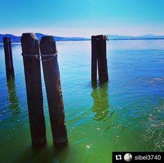 #Repost @sibel3740  Shades of blue... #tb #trasimenolake #umbria #italy #travelgram #lake #water #wood #sky #fiftyshades_of_nature_ #naturephotography #nature_lovers #shadesofblue #capturethemoment #zen #the_gallery_of_magic #instagram #fotofreakslimburg #instapic