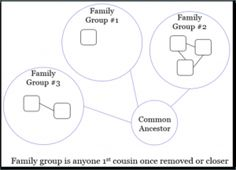 """Creating DNA Circles – Exploring the Use of """"Genetic Networks"""" in Genetic Genealogy – The Genetic Genealogist"""