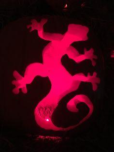 A lizard at our Rainforest themed Pumpkin House Pumpkin House, Halloween, Spooky Halloween
