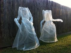 Chicken wire and cheese cloth halloween ghosts yard decorations. We finally finished !