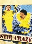 Stir Crazy (1980) In their second of four on-screen teamings, Gene Wilder and Richard Pryor are two slackers who get bum-rapped and shipped directly to the Arizona State Penitentiary (where parts of this big-house comedy were actually filmed). Sidney Poitier helmed this surprise smash hit, which set a new record at the time as the biggest moneymaker by an African-American director. Craig T. Nelson and JoBeth Williams co-star.