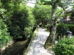 """Walking the Path of Philosophy - great article by Michael Lambe.  Good overview for English-speaking travelers interested in knowing more about this public path and it's """"walking meditation.""""  Kyoto."""